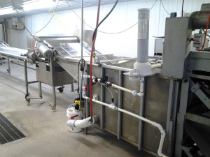 Packing line-2a