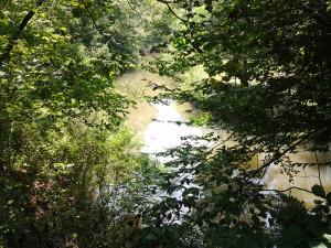 River-DD-1