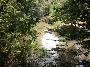 River-DD-2