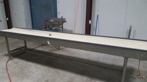 lakewood-belt-inspection